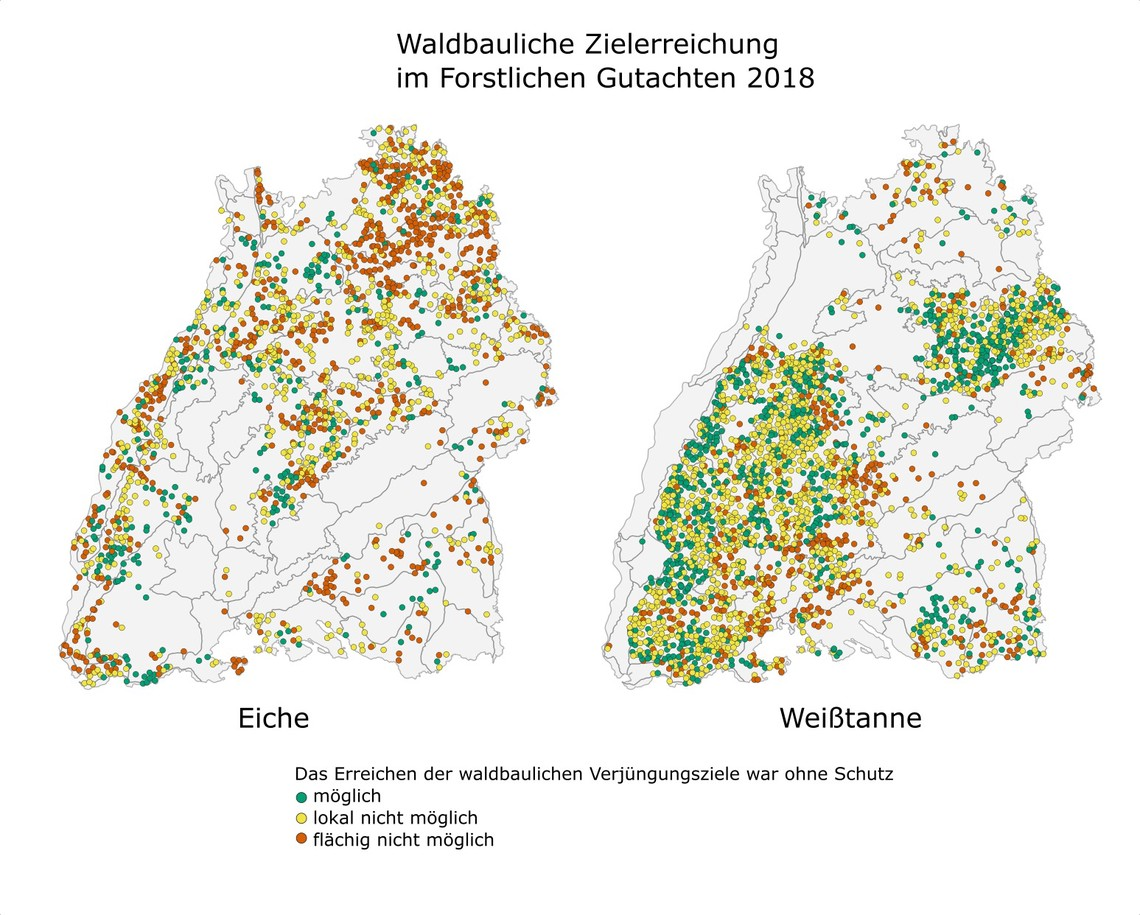 Waldbauliche Zielerreichung © FVA