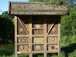 Insektenhotel,Lebensraumförderung
