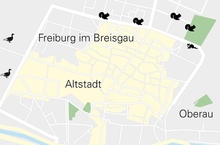 Professur für Wildtierökologie und Wildtiermanagement Uni Freiburg
