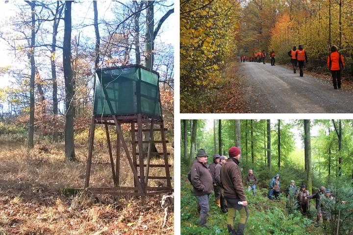 Jagdförderung InfraWild Bildkollage der Jagd in Baden-Württemberg