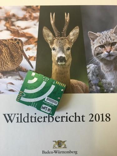 Rebhunhnforschung,Wildforschungsstelle,AudioMoth,WFS