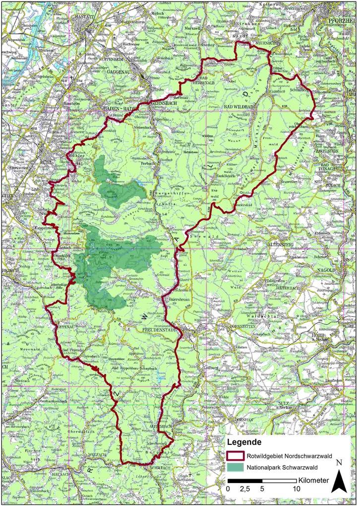 Rotwildgebiet Nordschwarzwald mit Nationalpark